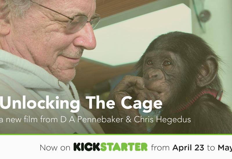 UnlockingTheCage_KickstarterTeaser-4